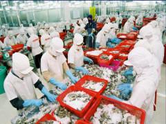 Tính toán đối đầu đại dịch, đại gia Việt vẫn đặt cửa ngàn tỷ