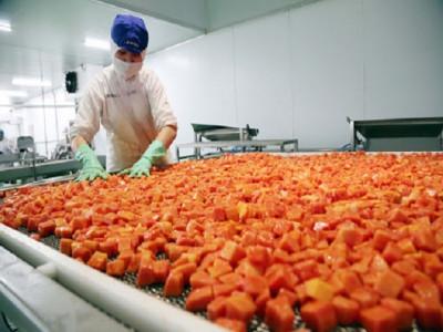 Kỳ vọng vào Top 10 thế giới công nghiệp chế biến nông sản