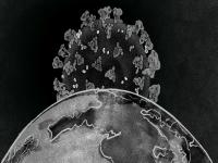 Thư gửi Startup: Thiên Nga Đen – Corona Virus