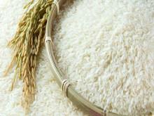 Việt Nam xuất khẩu 1,3 triệu tấn gạo từ đầu năm 2020