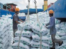 """Triển vọng xuất khẩu gạo Việt Nam có """"cơ"""" vượt Thái Lan"""