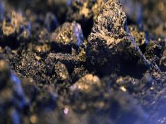Thế giới đình trệ vì Covid-19, than là nhiên liệu hóa thạch đắt đỏ nhất hành tinh