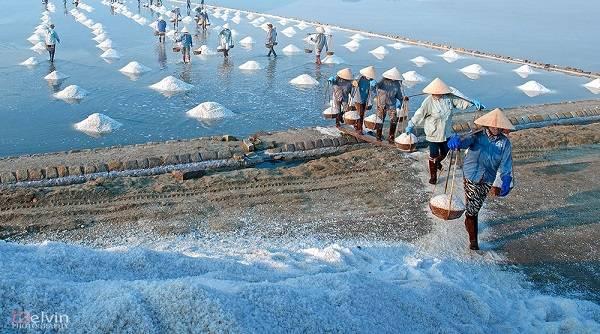 Ngỡ ngàng vẻ đẹp mặn mòi của ruộng muối miền Tây