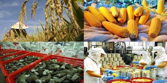 EU đóng cửa biên giới: Chưa tác động đến lưu thông hàng hóa giữa Việt Nam và EU