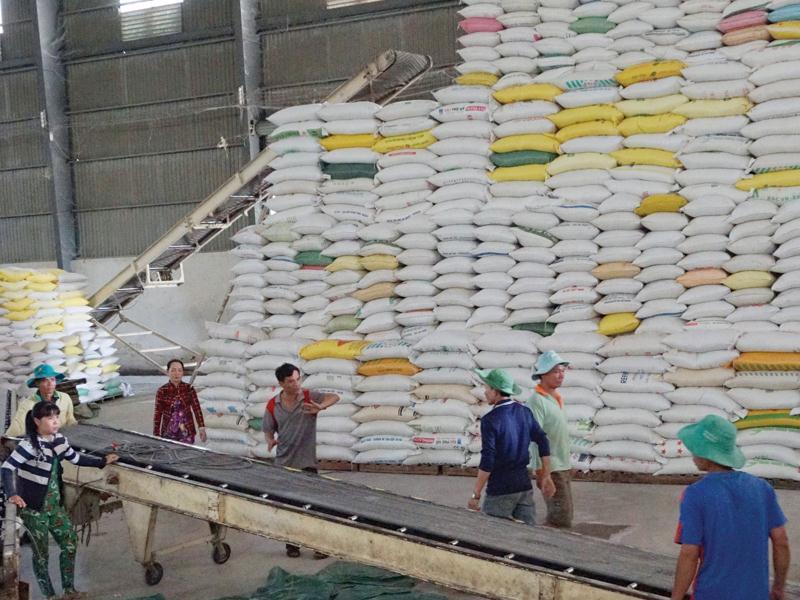 Xuất khẩu gạo được giá