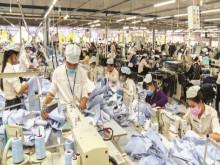 Chuyên gia ADB: Độ trễ càng ngắn, chính sách càng hiệu quả