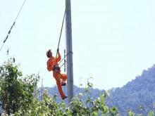 Nghệ An:  Điện lực thông báo giảm tiền điện hỗ trợ khách hàng bị ảnh hưởng dịch Covid-19