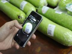 'Cửa mở' cho doanh nghiệp sản xuất nông nghiệp trong tâm dịch Covid-19