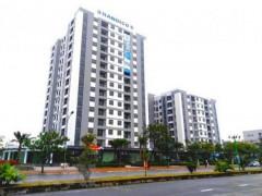 Dịch COVID-19: Nhiều sàn giao dịch bất động sản phải ngừng hoạt động
