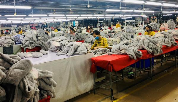 Thanh Hóa: Tình hình hoạt động sản xuất, kinh doanh của doanh nghiệp trong bối cảnh dịch bệnh