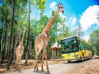 Tập đoàn Vingroup đề xuất kế hoạch làm khu sinh thái Vinpearl Safari  ở Quảng Ninh