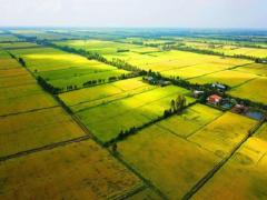 Quy định mới nhất về bồi thường thu hồi đất