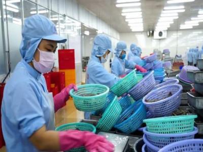 Cả 3 nhóm ngành hàng quan trọng giảm xuất khẩu trong 5 tháng đầu năm