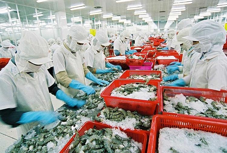 Nông sản Việt vào thị trường EU: Tăng chất để vượt hàng rào phi thuế quan