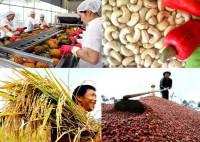 Loạt nông sản Việt chinh phục thị trường châu Âu