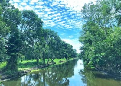 Du lịch sinh thái Lung Trời ở miệt Hậu Giang