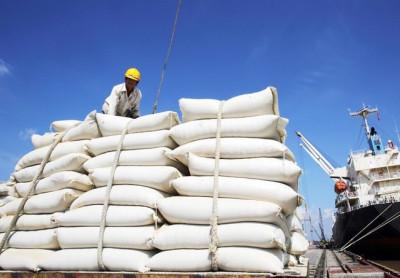 Xây dựng chất lượng gạo Việt để chiếm lĩnh thị trường