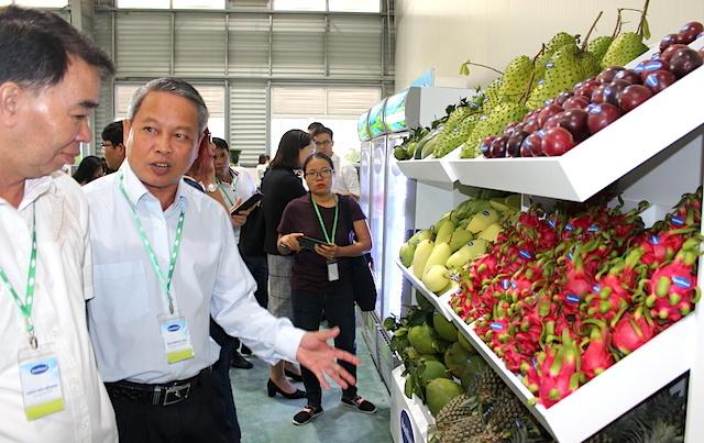 """Để trái cây Việt """"rộng đường"""" XK sang thị trường Mỹ"""