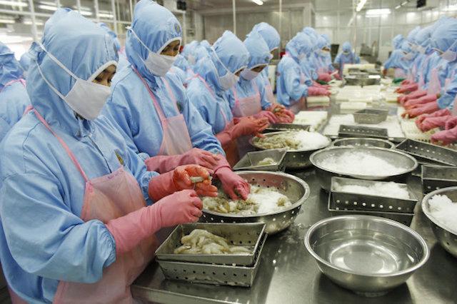 Xuất khẩu thủy sản: Làm ăn lớn không thể thấp thỏm lo nguyên liệu