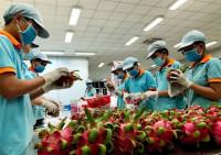 Bị 'tuýt còi', nông sản xuất khẩu khó giữ thị trường