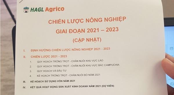 HAGL Agrico sẽ phát triển 35.600 ha cây ăn trái (chuối, xoài, dứa) và chăn nuôi bò sinh sản, bò thịt