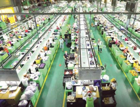 """Kỳ vọng thị trường lao động sẽ có nhiều """"điểm sáng"""" trong năm 2021"""
