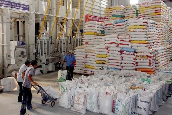 Gạo dự trữ có ý nghĩa rất quan trọng trong việc bảo đảm an ninh lương thực quốc gia