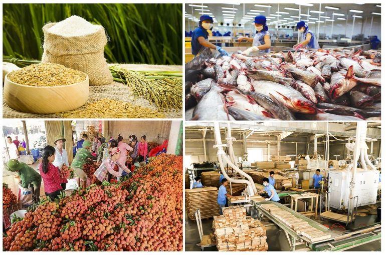 Xuất khẩu nông sản đầu năm 2021: Gạo đang là điểm sáng