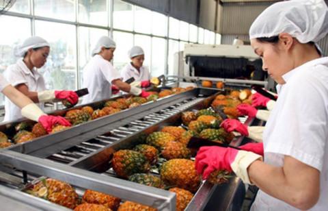 Kỳ vọng về tiềm năng xuất khẩu hàng rau quả năm 2021 của Việt Nam