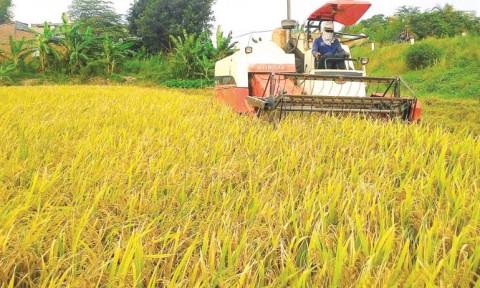 """Tiếp tục duy trì và khẳng định ngành nông nghiệp  là """"bệ đỡ"""" của nền kinh tế"""