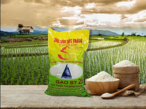 Làm gì để gạo ST25 thương mại hoá toàn cầu?