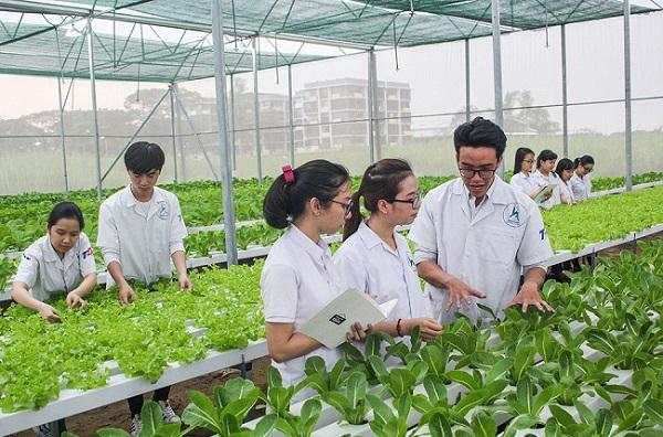Khu nông nghiệp ứng dụng công nghệ cao