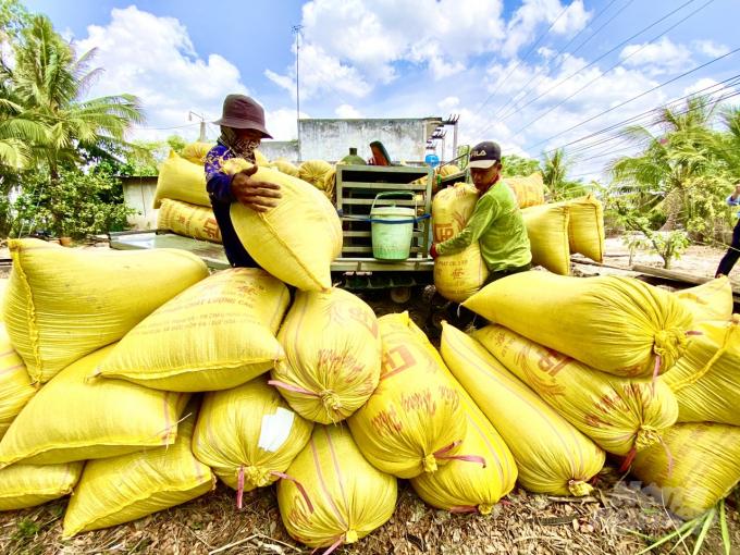 Cả hước hiện có 238 thương nhân xuất khẩu gạo