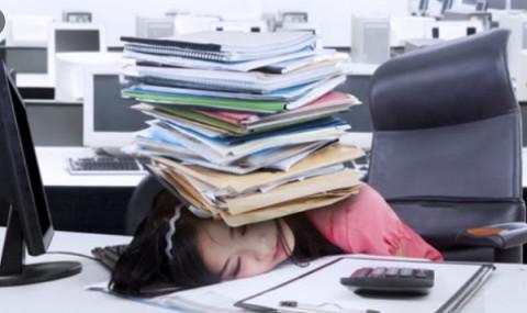 Kiến thức cơ bản và quy định của pháp luật về nghề kế toán