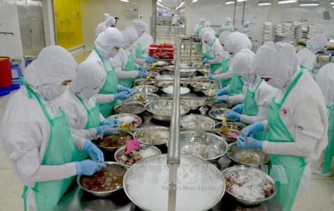 Kiên Giang: Kim ngạch xuất khẩu tăng mạnh trong tháng đầu năm 2021