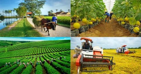 Cần trí thức hóa nông dân