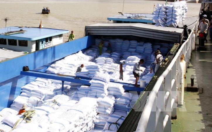 Xuất khẩu gạo năm 2021 dự báo sẽ tăng trưởng mạnh nhờ những ưu đãi từ các hiệp định thương mại tự do