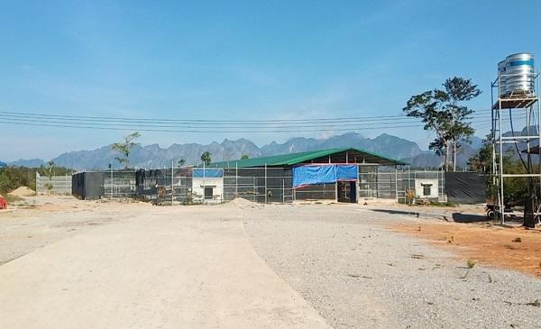 Trai nuôi nhốt hổ ở Polykhamxay, Lào