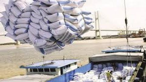 Kiên Giang: Các doanh nghiệp thực hiện đúng các quy định khi xuất khẩu gạo sang Indonesia