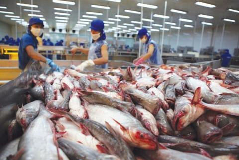 VASEP dự báo xuất khẩu thủy sản năm 2021 xuất khẩu thủy sản có thể tăng gần 5%