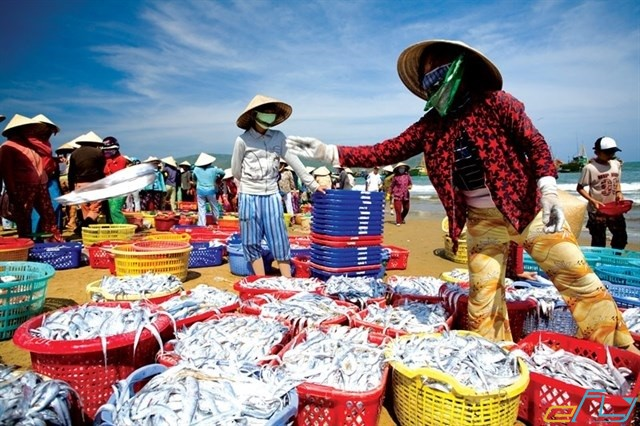 chợ hải sản sau tết.