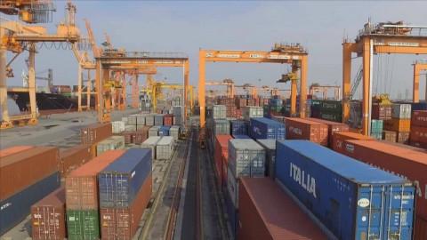 Ngành Nông Lâm Thủy sản kim nghạch xuất nhập khẩu tăng vượt mức chỉ tiêu