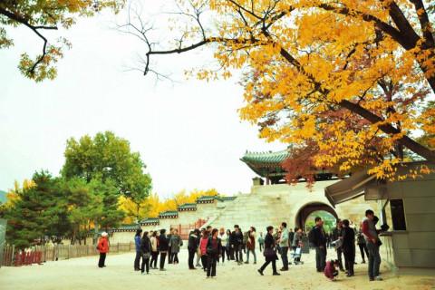 Đại dịch khiến các doanh nghiệp lữ hành của Hàn Quốc sụt giảm doanh thu