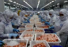 Nhiều mặt hàng xuất khẩu sang Australia tăng đột biến
