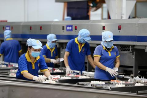 Doanh nghiệp tuyển hàng ngàn lao động để chuẩn bị cho việc sản xuất trong năm mới