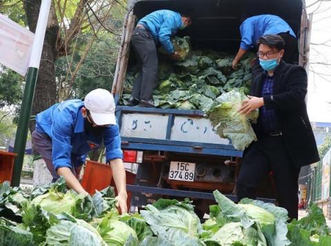 Tặng miễn phí nông sản, thực phẩm sạch cho người lao động tại các doanh nghiệp