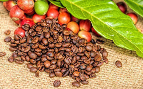 Cà phê của Việt Nam chiếm 17,61% tổng lượng nhập khẩu của Hàn Quốc trong năm 2020