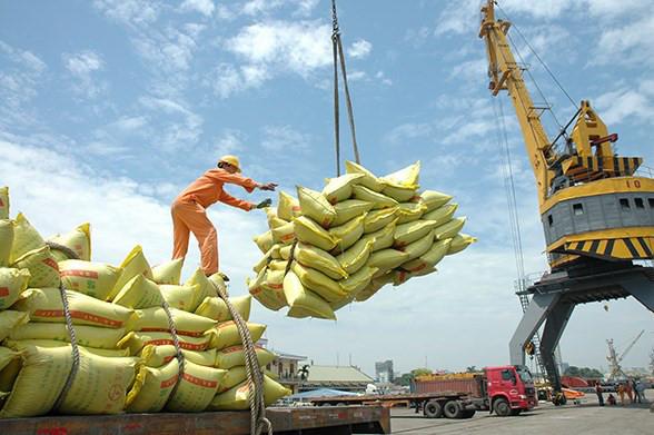 Xuất khẩu gạo trong tháng 2/2021 ước đạt hơn 262.000 tấn