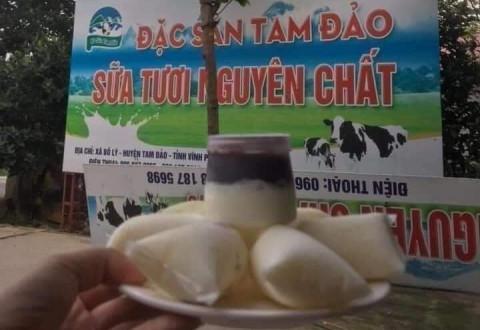 Tam Đảo ( Vĩnh Phúc): Từ nguồn cung ứng nguyên vật liệu sữa tới sản phẩm OCOP 3 sao