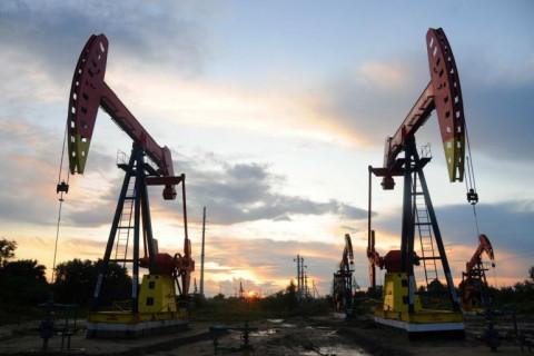 Giá dầu ngày 26/2 có xu hướng giảm